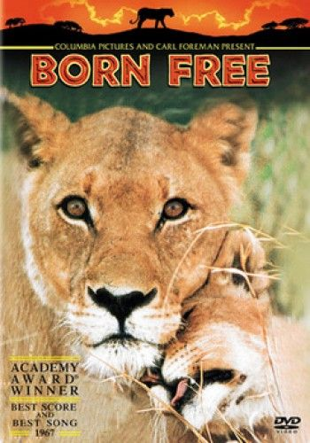 Download Born Free Full-Movie Free