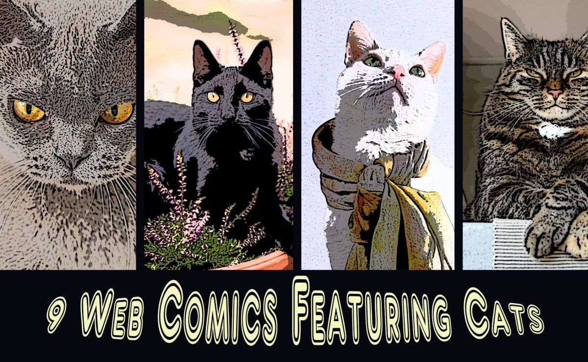 My Top 9 Favorite Must Read Web Comics Featuring Cats Cat Adoption Business Cat Cat Theme