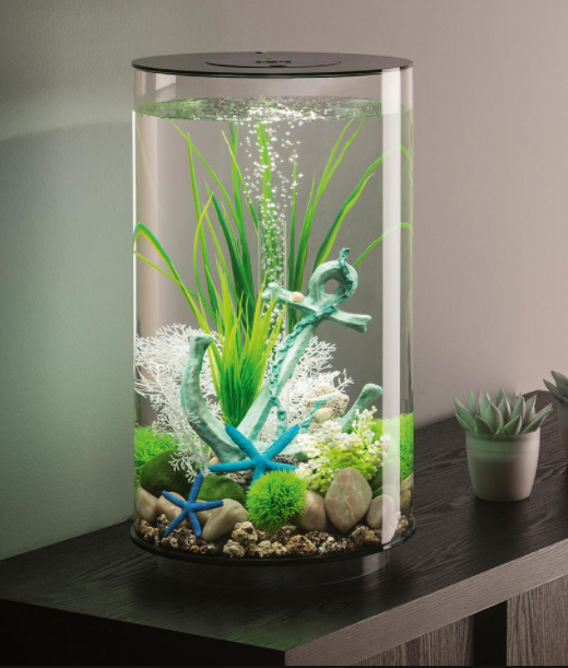 30L Aquarium, accent top and base in black comes with