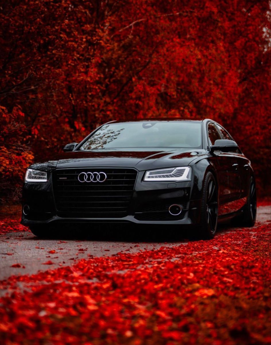 Pin By Tigrezz On Audi S In 2020 Audi A8 Audi Best Luxury Cars