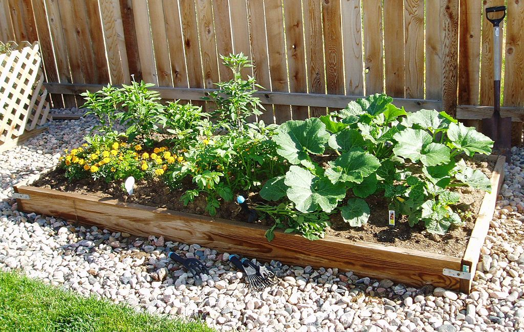 How To Grow A Beautiful Garden At High Altitude Vegetable Gardening In Colorado Recycled Garden Vegetable Garden Design Vegetable Garden For Beginners