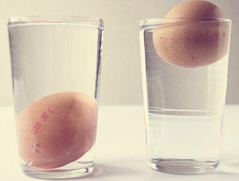 truc pour savoir si un uf est encore frais eggs truc. Black Bedroom Furniture Sets. Home Design Ideas