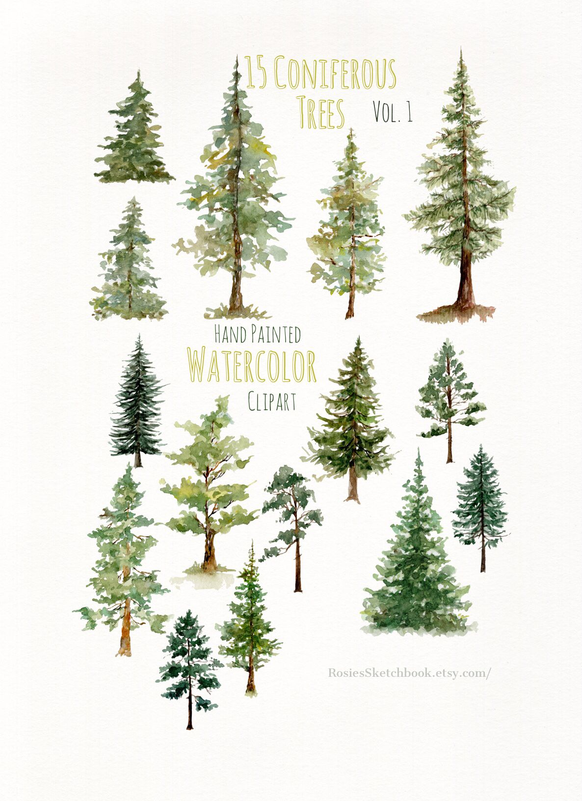 looking for pine tree clipart check out these hand painted watercolor pine trees  [ 1186 x 1632 Pixel ]