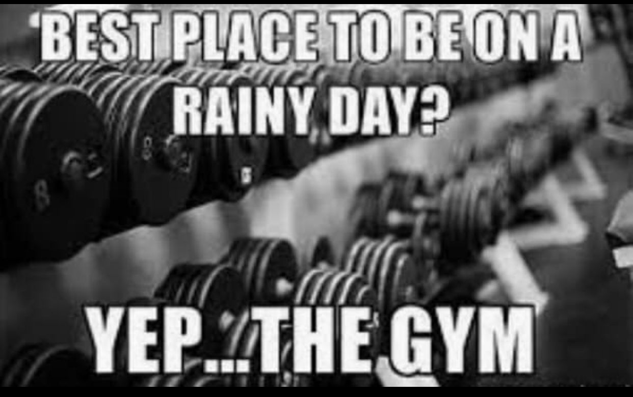 Pin By Wilson Duarte On Gym Memes Physical Fitness Program Fitness Motivation Inspiration Fitness Quotes