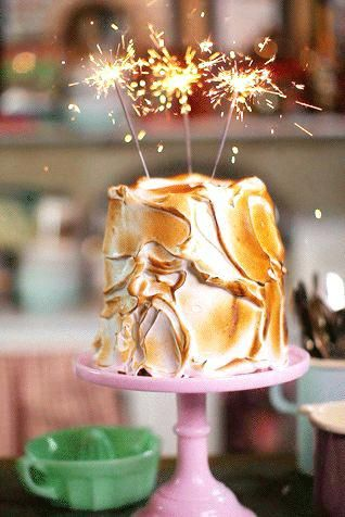 birthday cake sparkler candles toasted marshmallow cake w sparklers