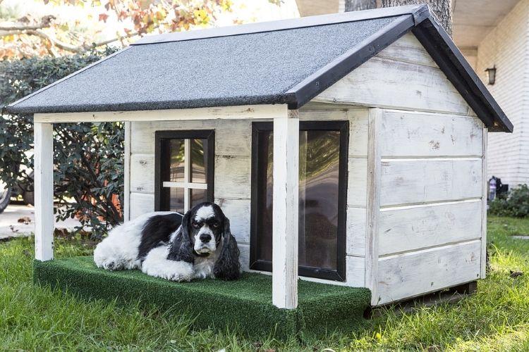 Outdoor Dog Kennels Cool Dog Houses Dog Steps Outdoor Dog