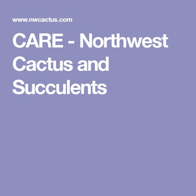 CARE - Northwest Cactus and Succulents