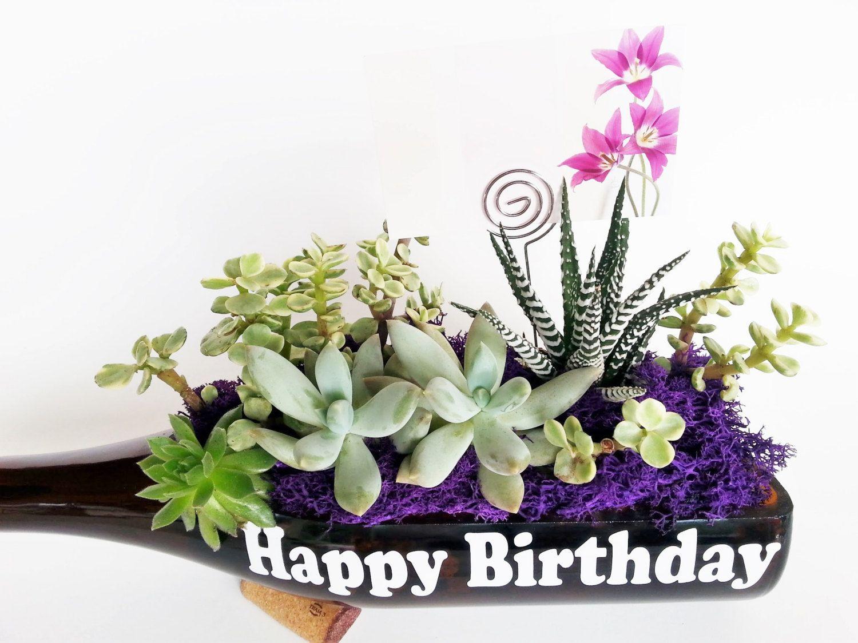 succulent gift / happy birthday gifts / mom grandma girlfriend