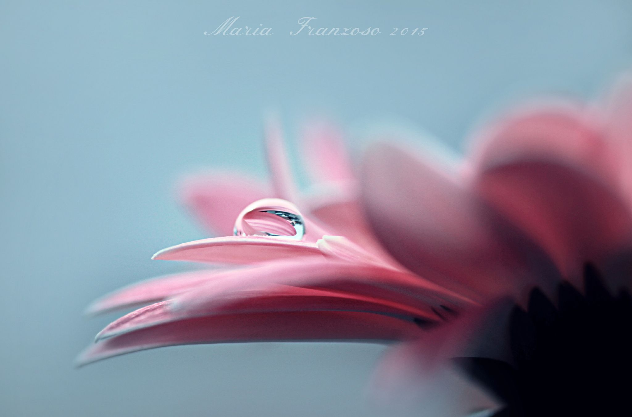 A little secret by maria franzoso on px photography pinterest