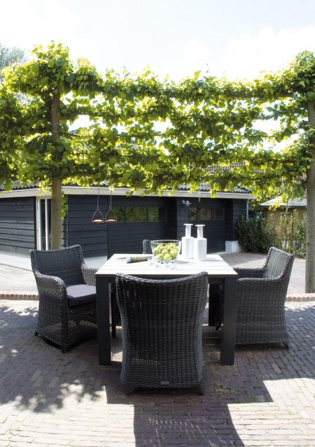 rattan sitzgruppe im garten terrasse sichtschutz ideen mit kletterpflanzen sichtschutz pinterest. Black Bedroom Furniture Sets. Home Design Ideas