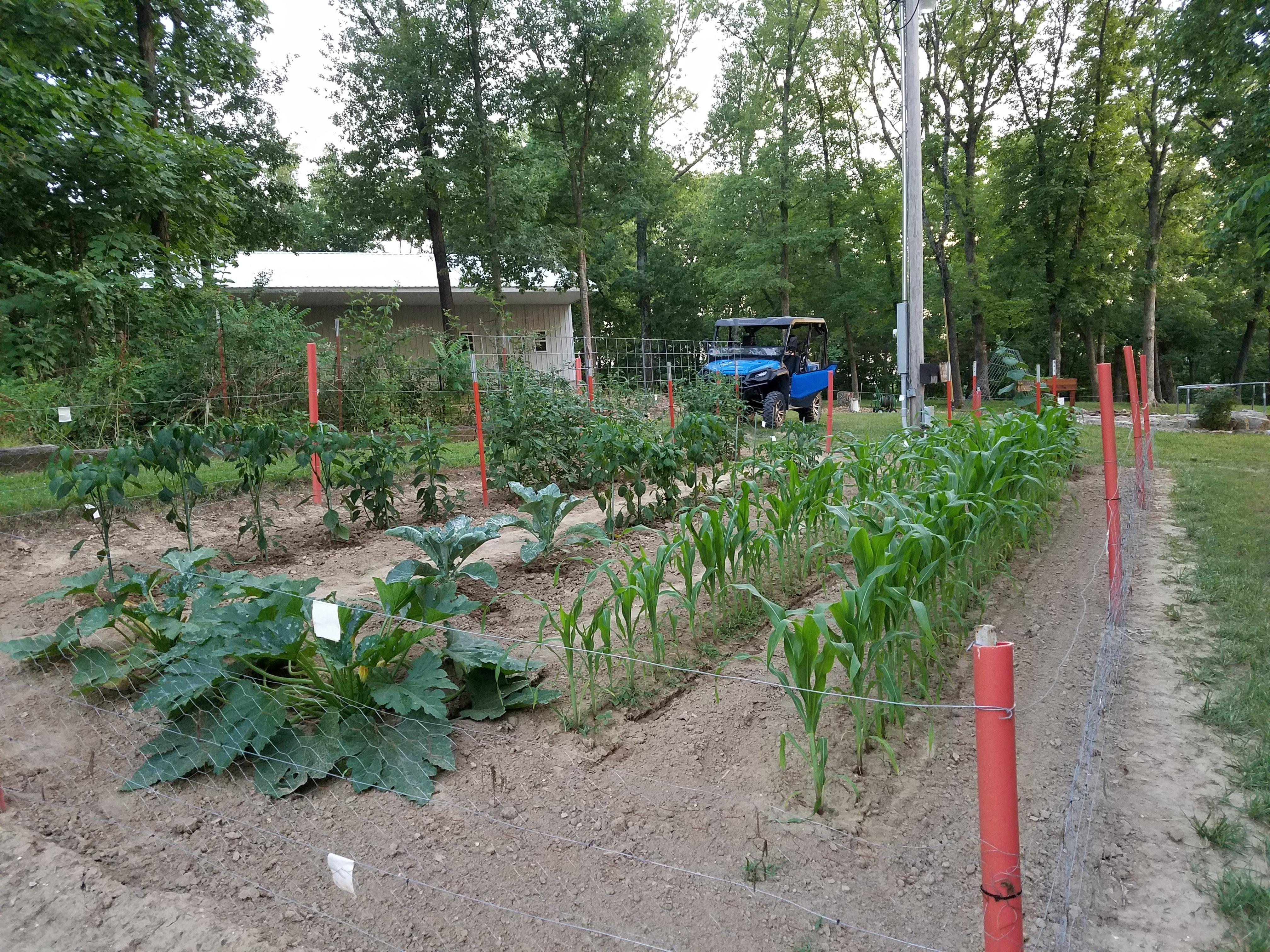 My Missouri Garden 61718 #Gardening #Garden #Diy #Home