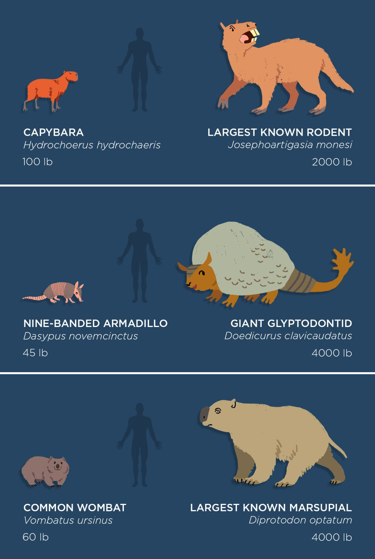 The past is packed with monsters! Behemoths by the... #prehistoricanimals