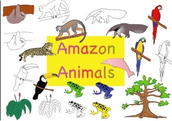 Amazon Animals Clipart For Commercial And Personal Use Amazon