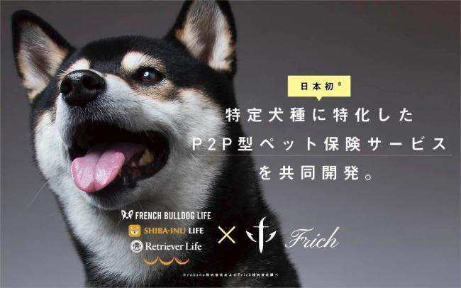 Rakanu Frich 日本初の 特定犬種に特化した P2p 型ペット保険 サービス を共同開発 年内に提供開始予定 犬種ごとにグループを作り 特定犬種に最適化された保険への申込みが可能 Frich株式会社のプレスリリース ペット保険 犬 ペット