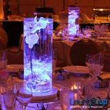 Light up vases