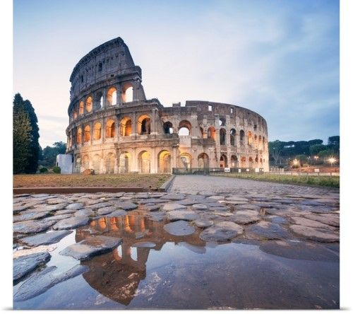 poster print wall art print entitled colosseum reflected. Black Bedroom Furniture Sets. Home Design Ideas