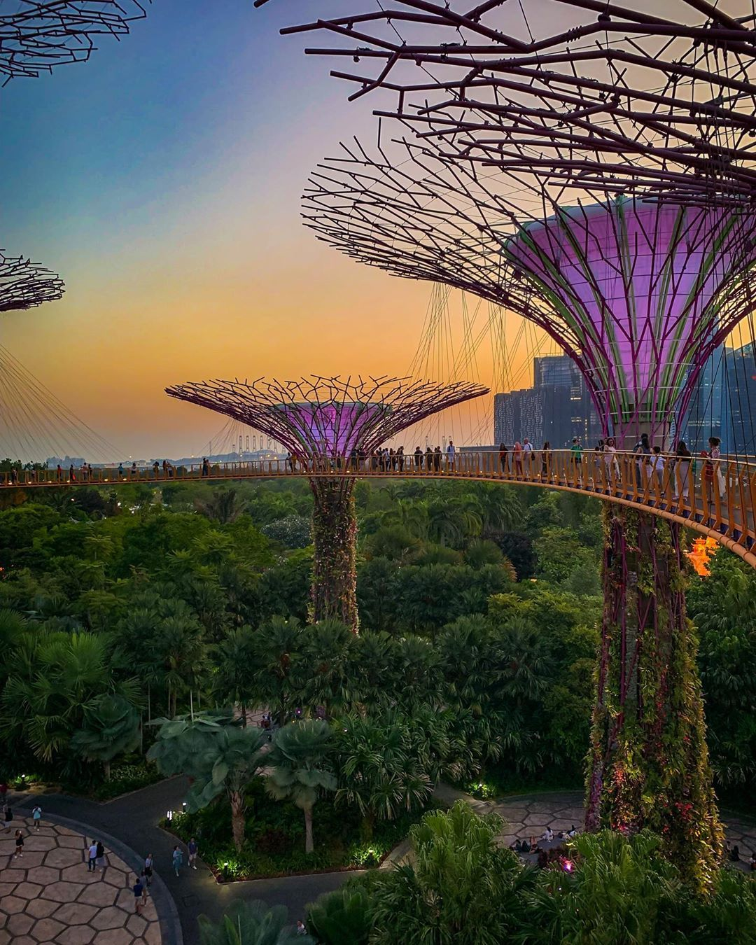 Gardens By The Bay Singapore By Firstofly Author Traveling Travelers Travelblogge Gardens By The Bay Travel Photography Luxury Travel