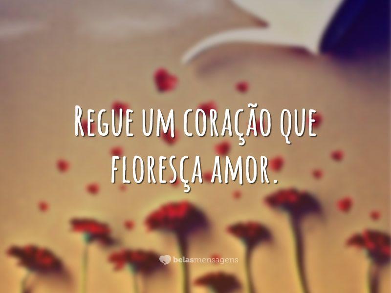Flores de amor