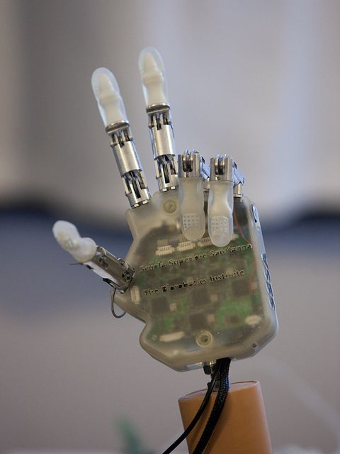 LifeHand 2 - Robotic Hand - Electrodes - Other Devices