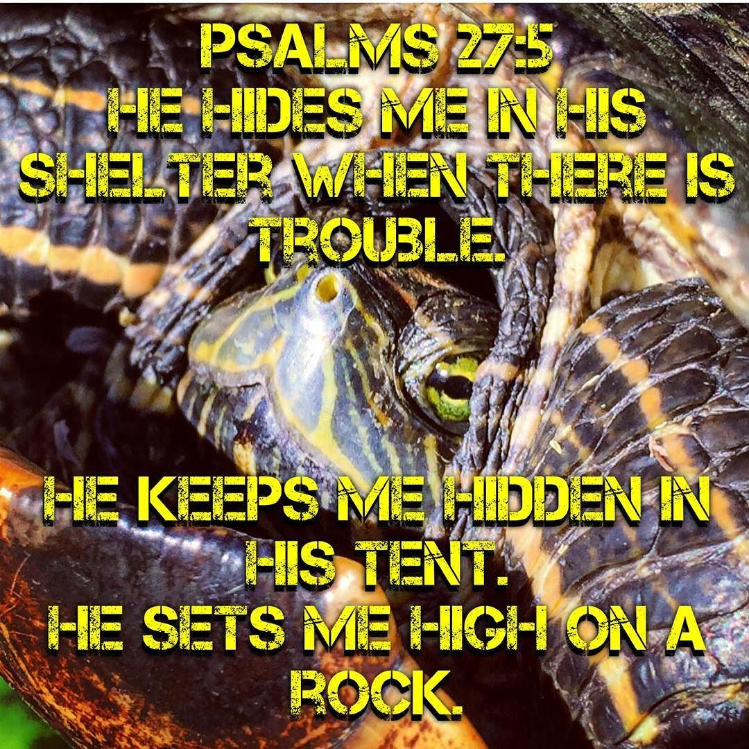 Psalms 27:5 He hides me in his shelter when there is trouble. He keeps me hidden in his tent. He sets me high on a rock. by jesus_is_the_answer