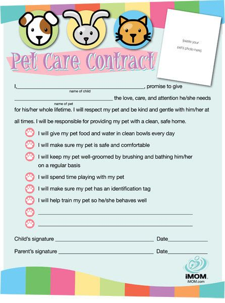 Pet Care Contract Girl Scouts Daisy Girl Scout Troop
