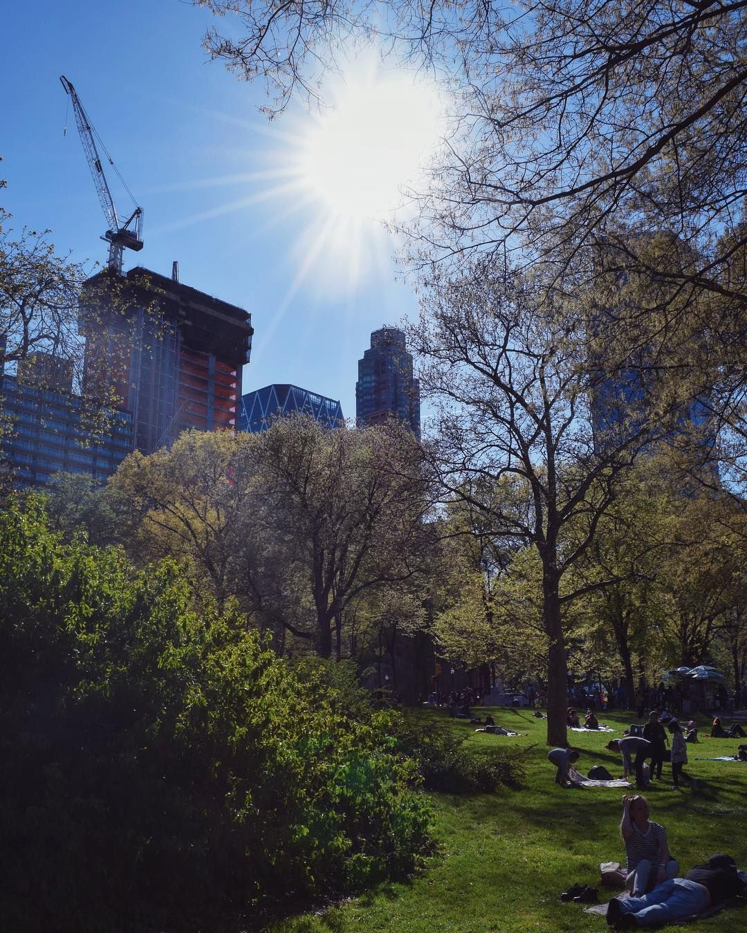 provocative-planet-pics-please.tumblr.com Central ParkNY  by martin_lutther https://www.instagram.com/p/BFETRPGGdTl/