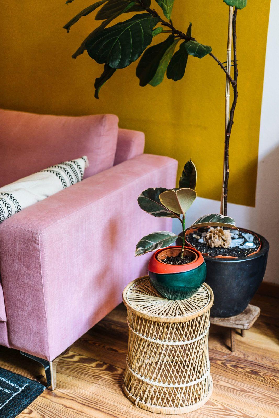 Interior Inspiration: Hippie Und Farbenfrohes Wohnzimmer Im Altbau Mit Rosa  Sofa, Boho Teppich, Gelber Wand, Monstera, Pflanzen #interior #inspiration  ...