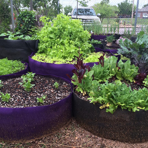 Fabric Pots For Gardeners Who Don T Have The Space For An Actual Flower Or Vegetable Bed Garden Plant Watering System Garden Pots