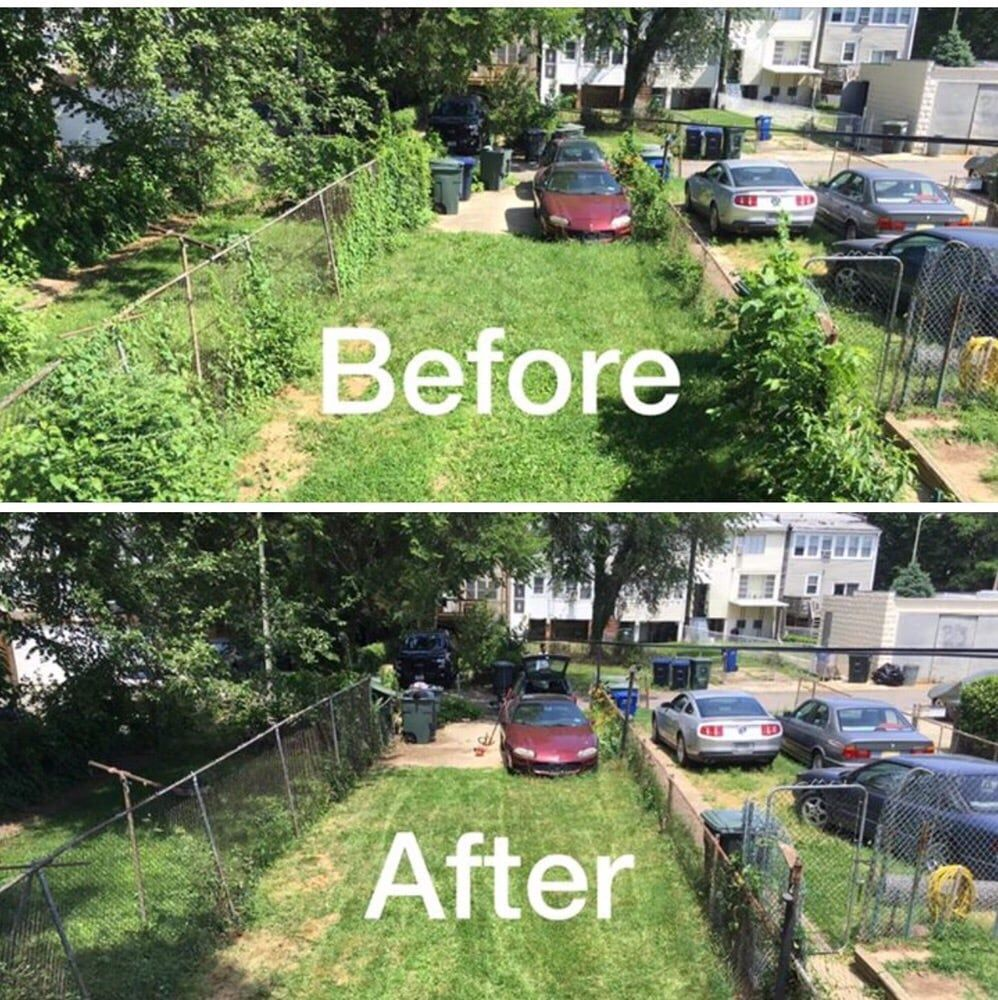 Backyard Clean Up Yard Cleanup Removes Unwanted Vegetation From