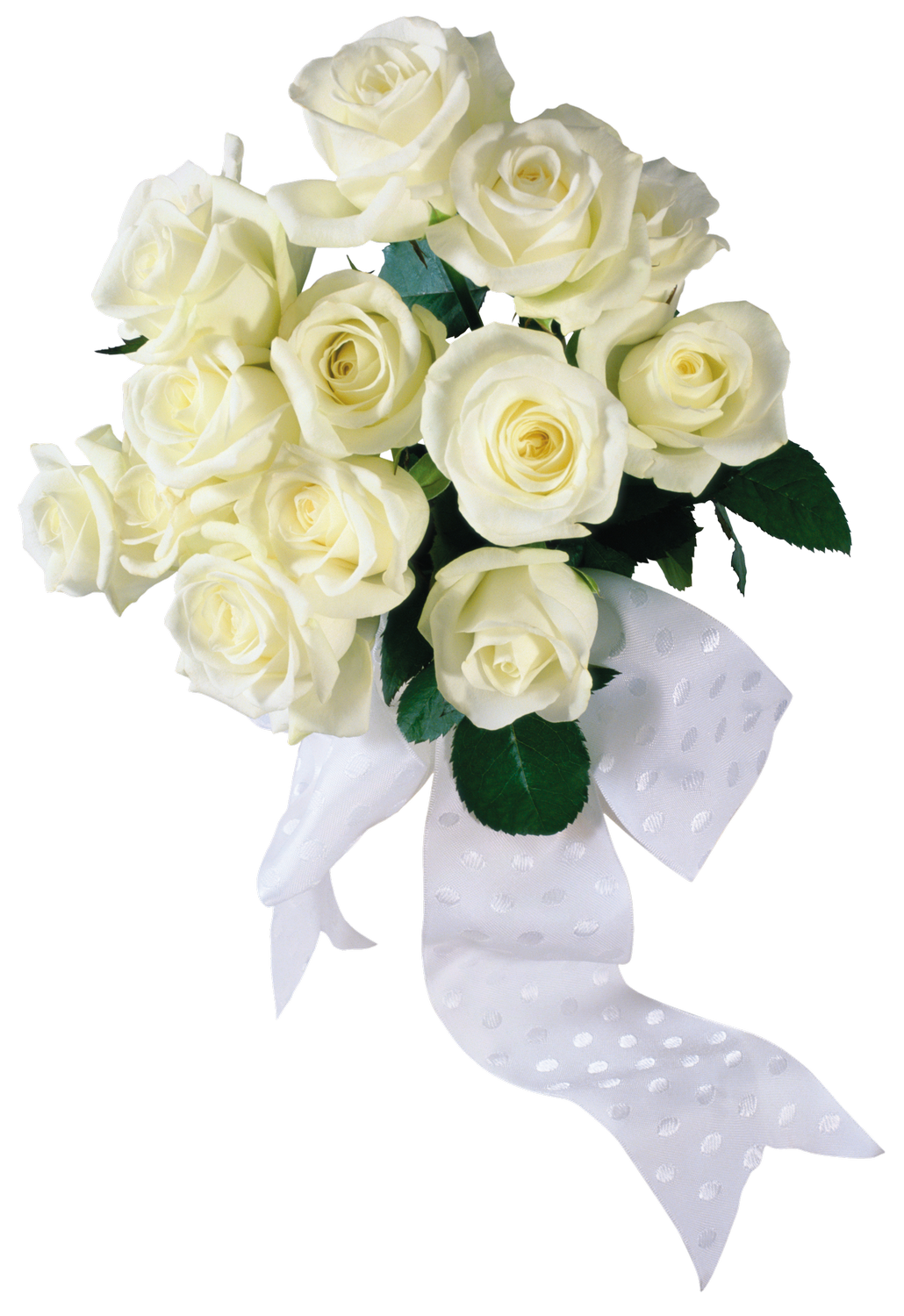 Pin by next on nature pinterest flowers wedding and white roses