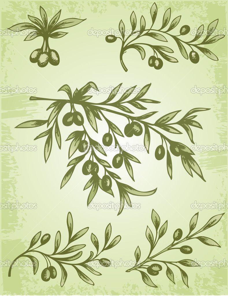 branch tattoo olive graphics: 7 тыс изображений найдено в Яндекс ...