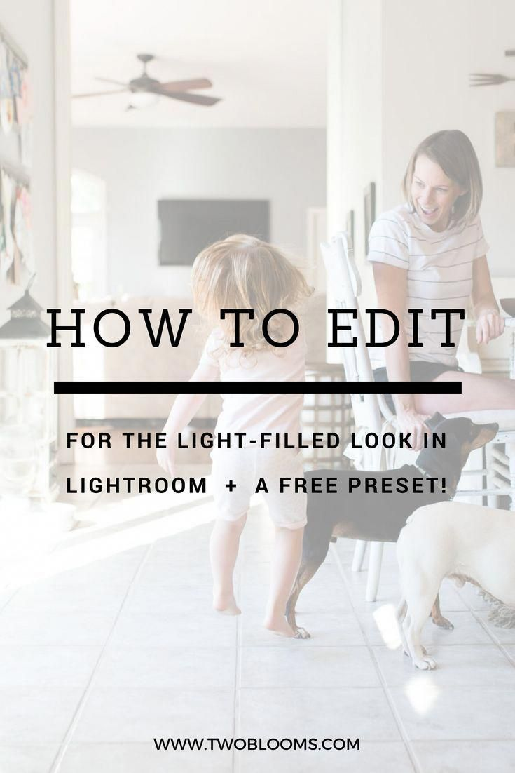 What Is the Difference Between Adobe Photoshop and Lightroom?