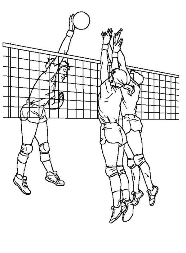Volleyball Blocking An Attack Coloring Page Download Print Online Coloring Pages For Free Color N Sports Coloring Pages Volleyball Drawing Coloring Pages