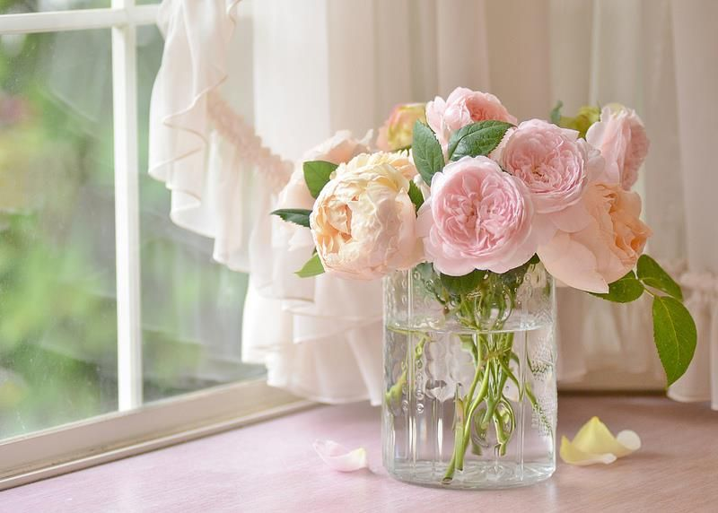 Épinglé par fleuriste sur flower story | Bouquet de fleurs, Belle photo, Fleurs