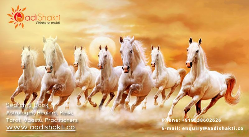 Vastu Tips - As per vastu shastra, placing a running horse image is very good effect in life ...