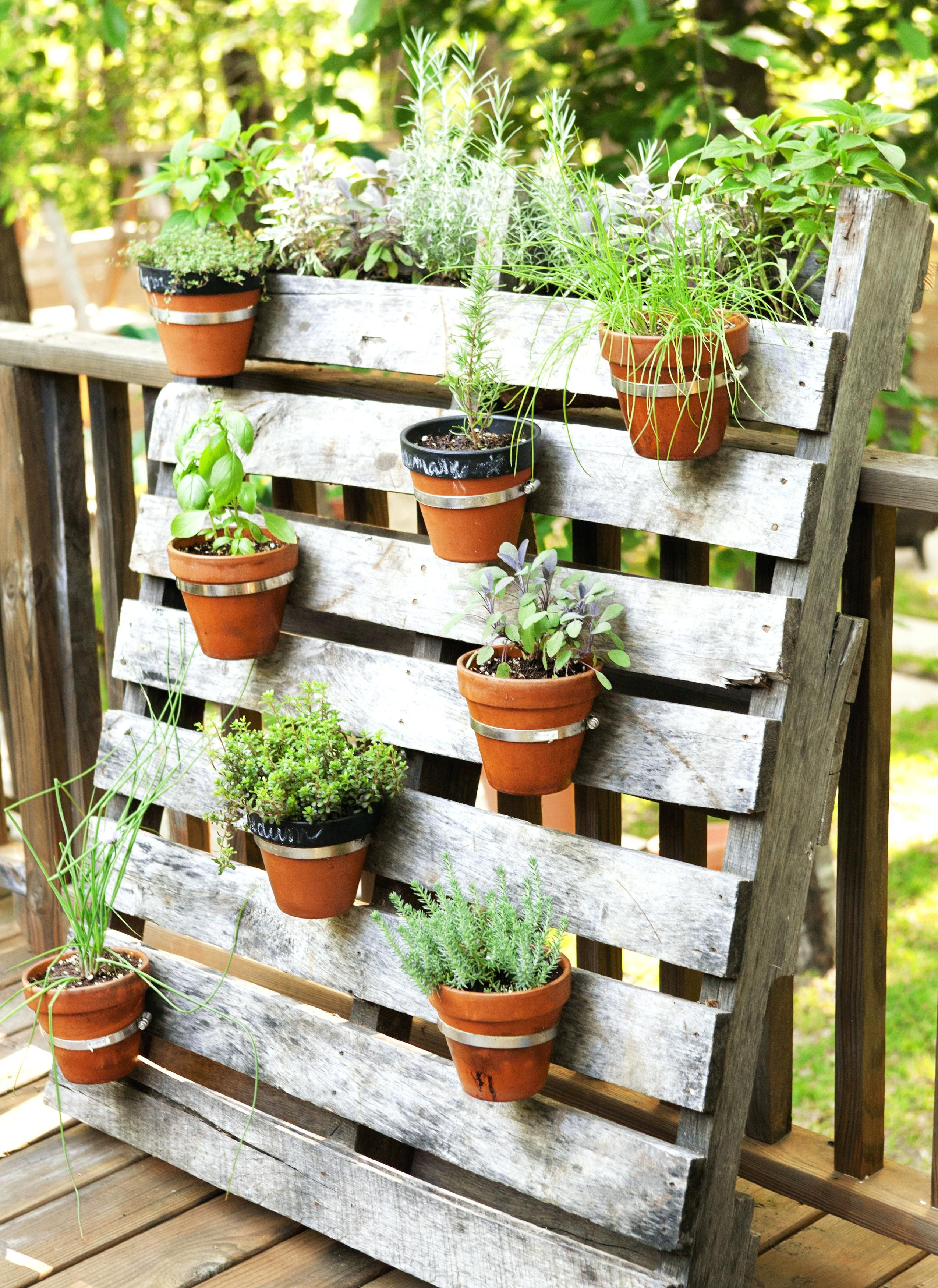 Vertical Garden Ideas To Get The Most Of The Space Small