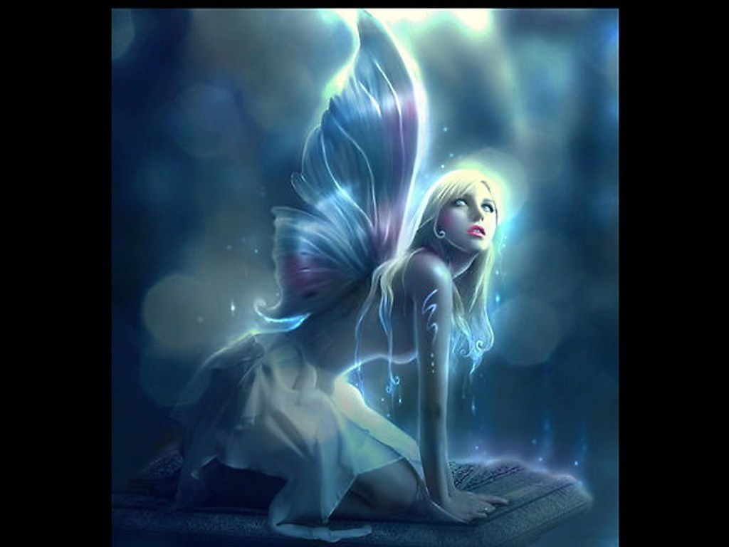 Enchanted fairies on pinterest fairies wallpapers and - Free fairy wallpaper and screensavers ...
