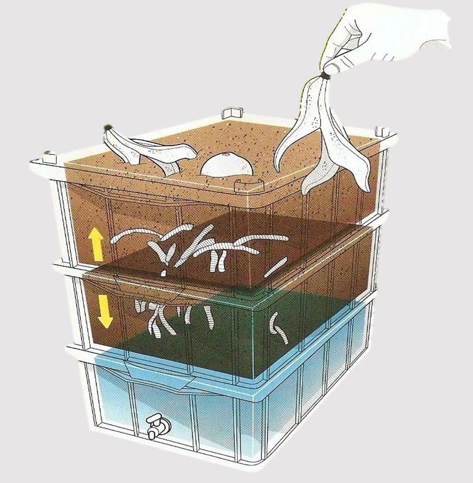 A compostagem é um conjunto de técnicas aplicadas para controlar a decomposição de materiais orgânicos.