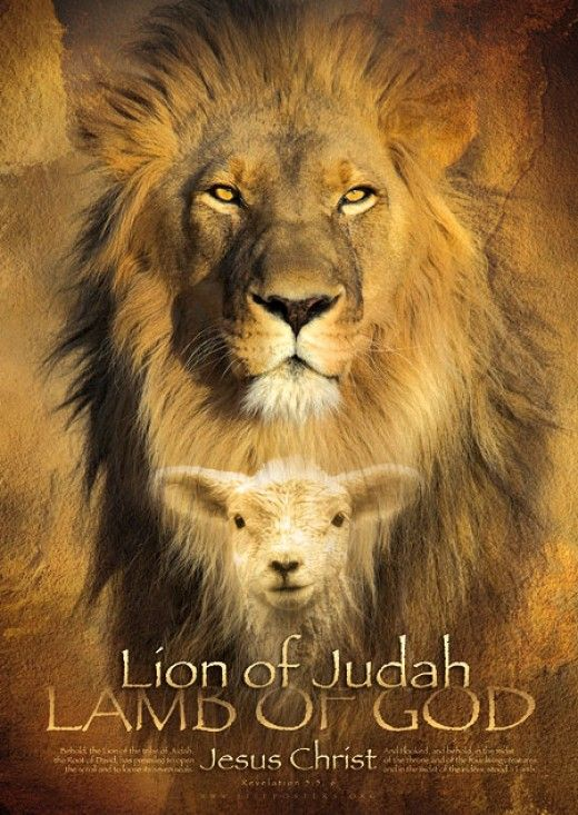 We Are The Seeds Of Abraham Isaac And Jacob The Tribe Of The Lion Of Judah Through The Worthy Lamb Of Jehovah Lion Of Judah Lion Poster Christian Posters