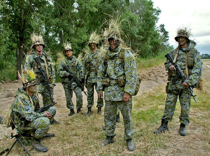 Sumrak camo (Russian, I think) A World of Camouflage