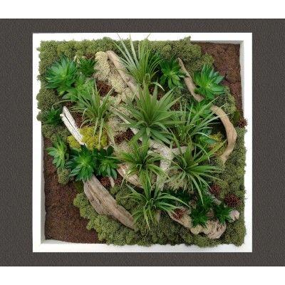 GREEN EMOTION H52 TABLEAU VEGETAL PLANTES ARTIFICIELLES