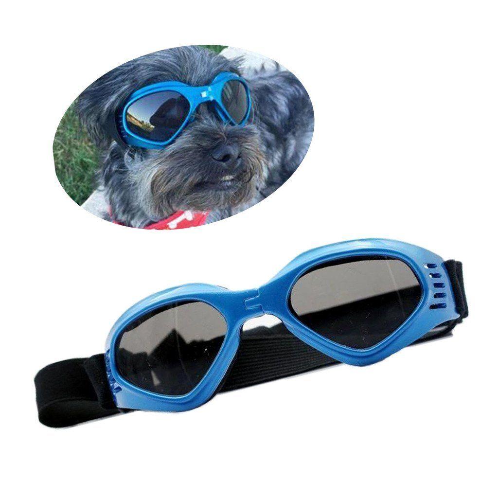 Enjoying stylish petdog uv goggles sunglasses check out
