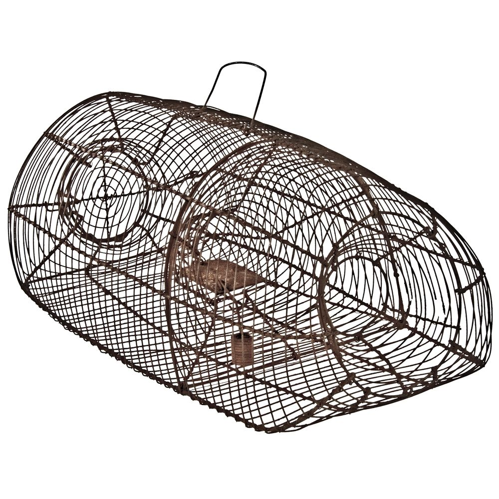 Pigeon or Quail Recovery Trap | For the Home | Pinterest | Quails
