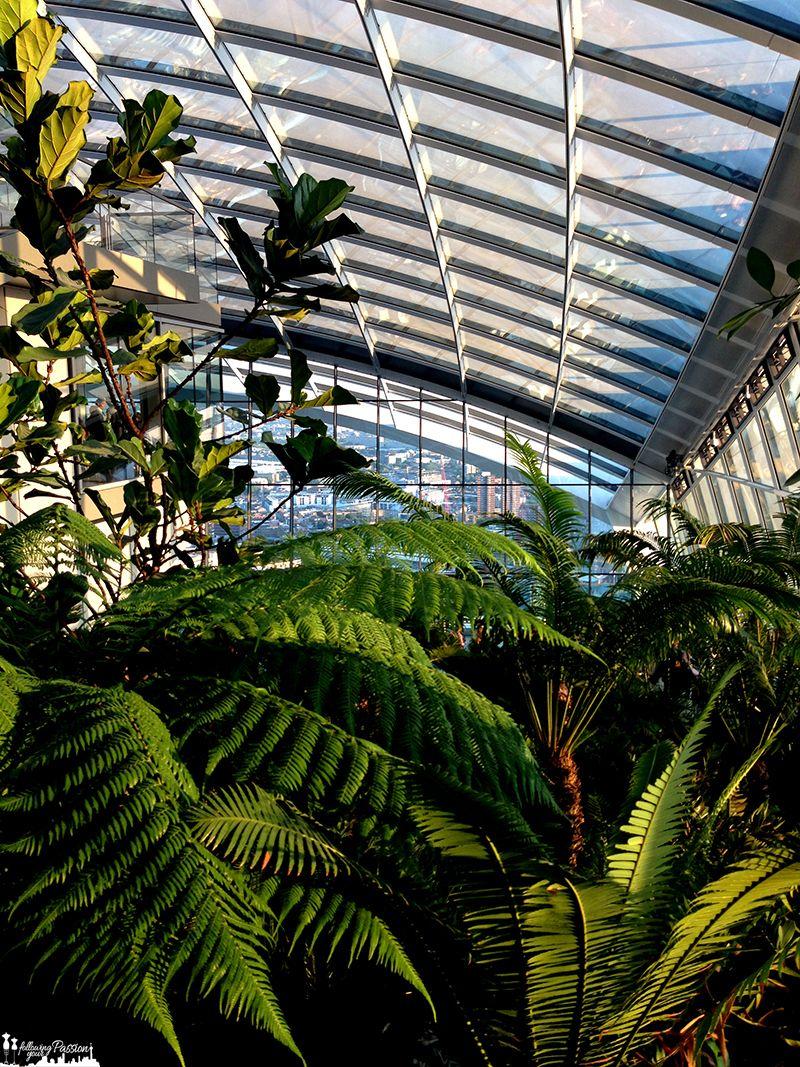 the-sky-garden-londra-cosa-da-fare-giardino-pensile-roof-top