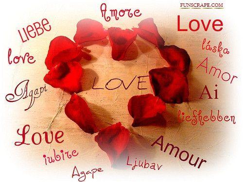 Alles Over Je Woonomgeving Op één Site: Plaatjes Met Tekst Over Liefde 3 Van Tekstplaatjes.US