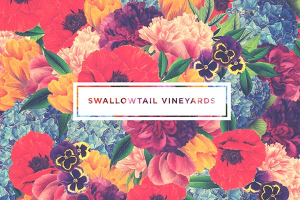 """""""Swallowtail Vineyards"""" Identity + Packaging on Behance"""
