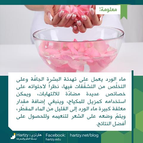 فوائد جديدة لماء الورد الرائع هذه المرة فوائد ماء الورد للبشرة وللشعر Anti Aging Skin Care Uig Skin Care