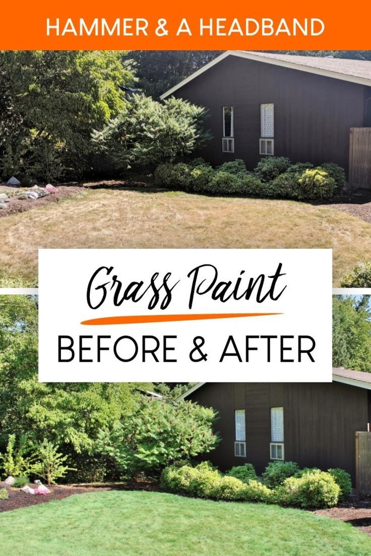 Before and after painting the lawn! Here's the easy way to turn yellow grass green in the summer without watering. This quick trick is nontoxic, safe for your lawn, and an instant curb appeal boost. Click to see the grass paint FAQs with before and after pics and an easy tutorial to paint your lawn green. #grasspaint #curbappeal #landscapingideas