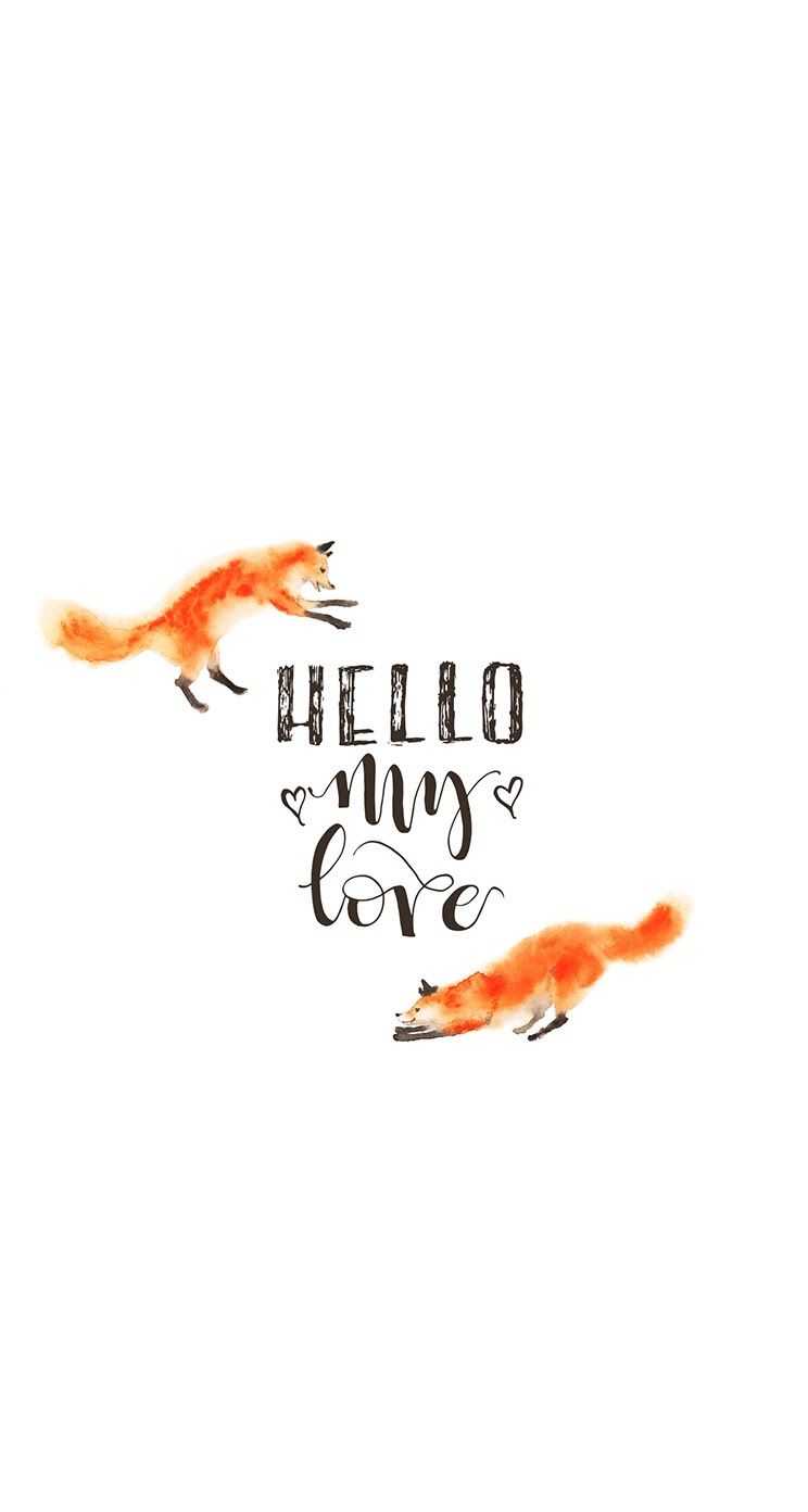 Hello My Love Foxes Iphone Wallpaper Background Lockscreen