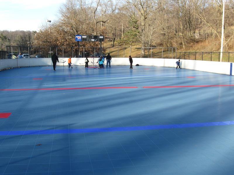 Roller hockey Sport Court Rink in 2020 Home basketball